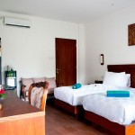 Deluxe Room Type A - (Twin Bed)