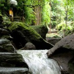 Goa Gajah shrines