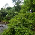 Petanu River trails